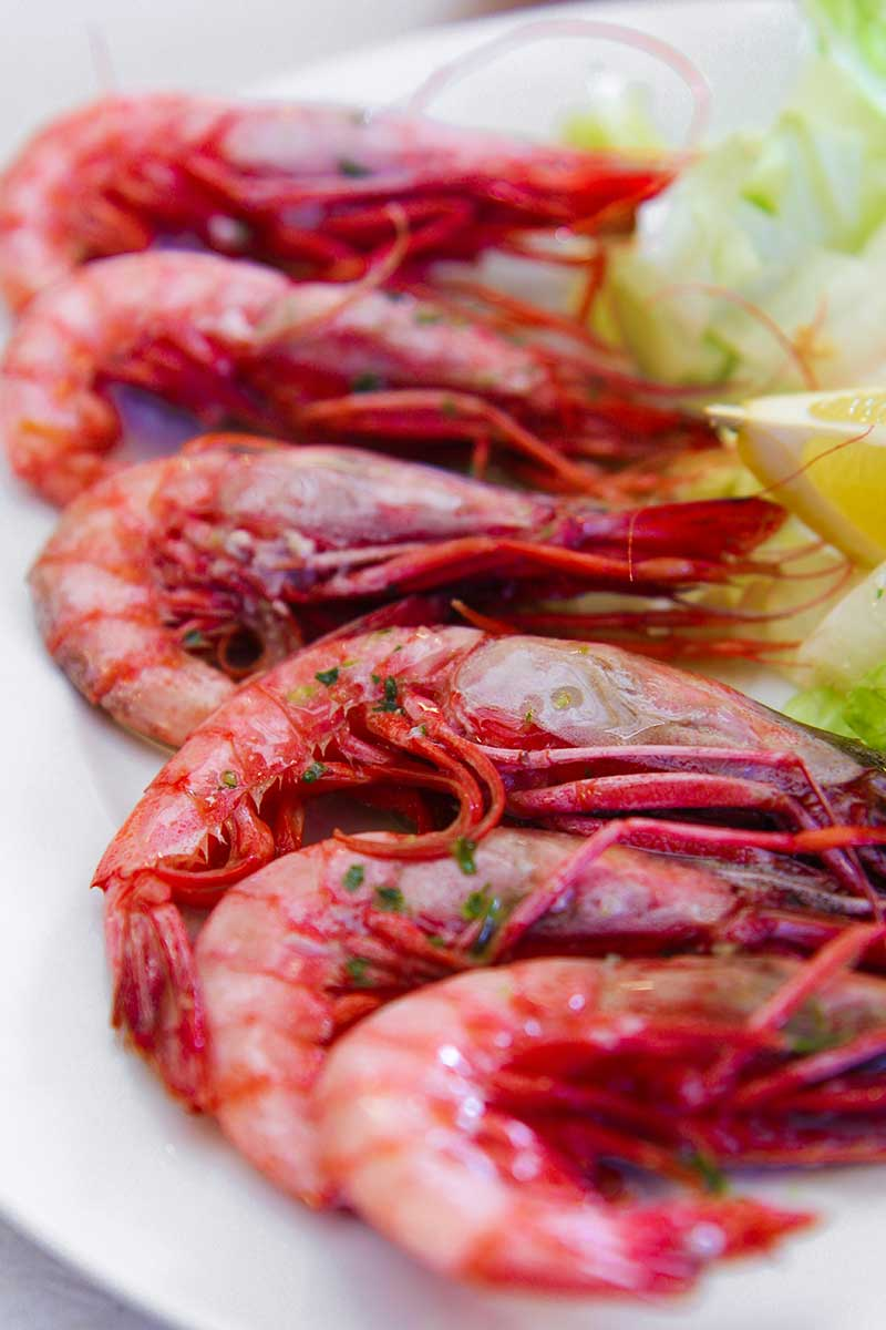 red shrimp Barcelona