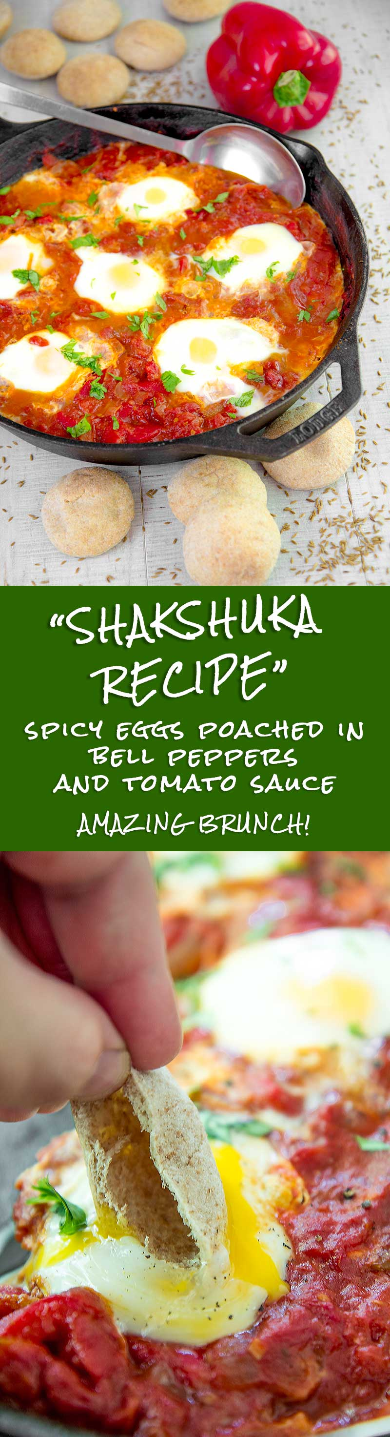 SHAKSHUKA RECIPE - spicy eggs poached in bell pepper and tomato sauce